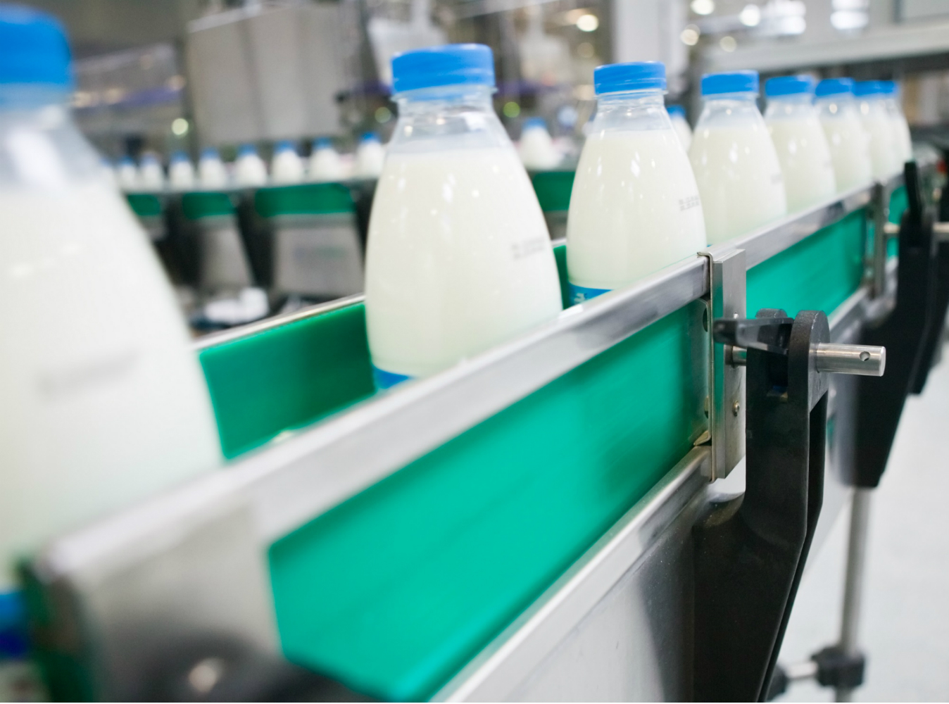 Milk Processing Line Diary Plant yogurt production cheese ayran butter manufacturing