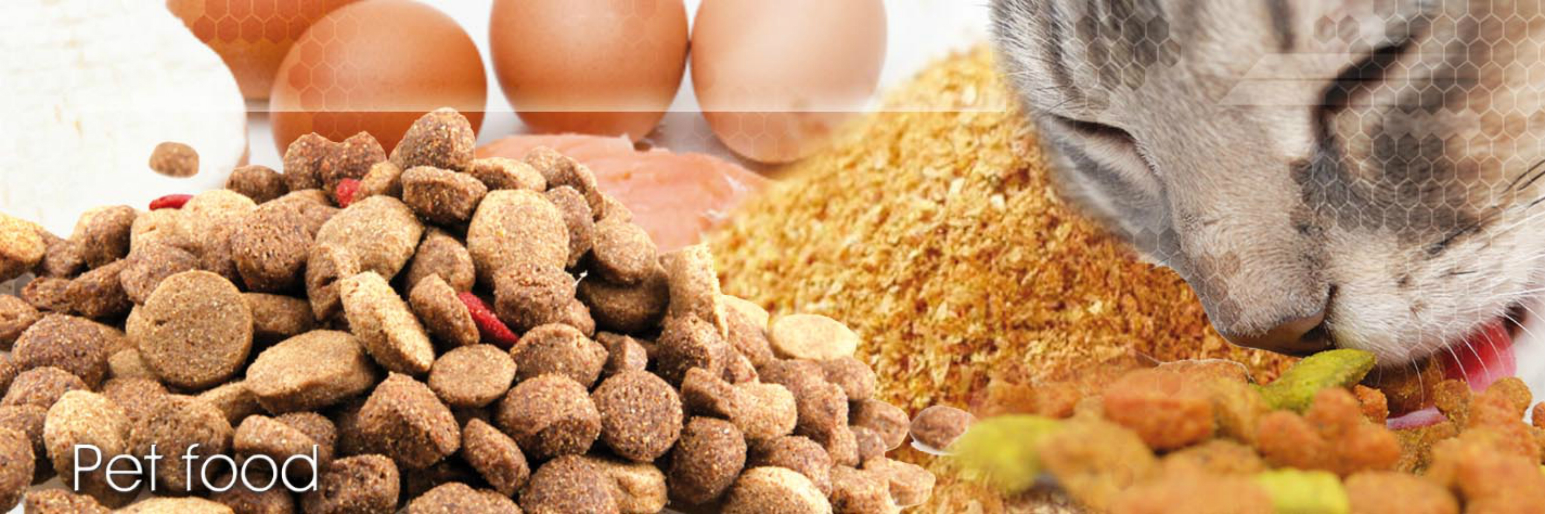 Complete turnkey Pet Food Production Line pet treat petfood