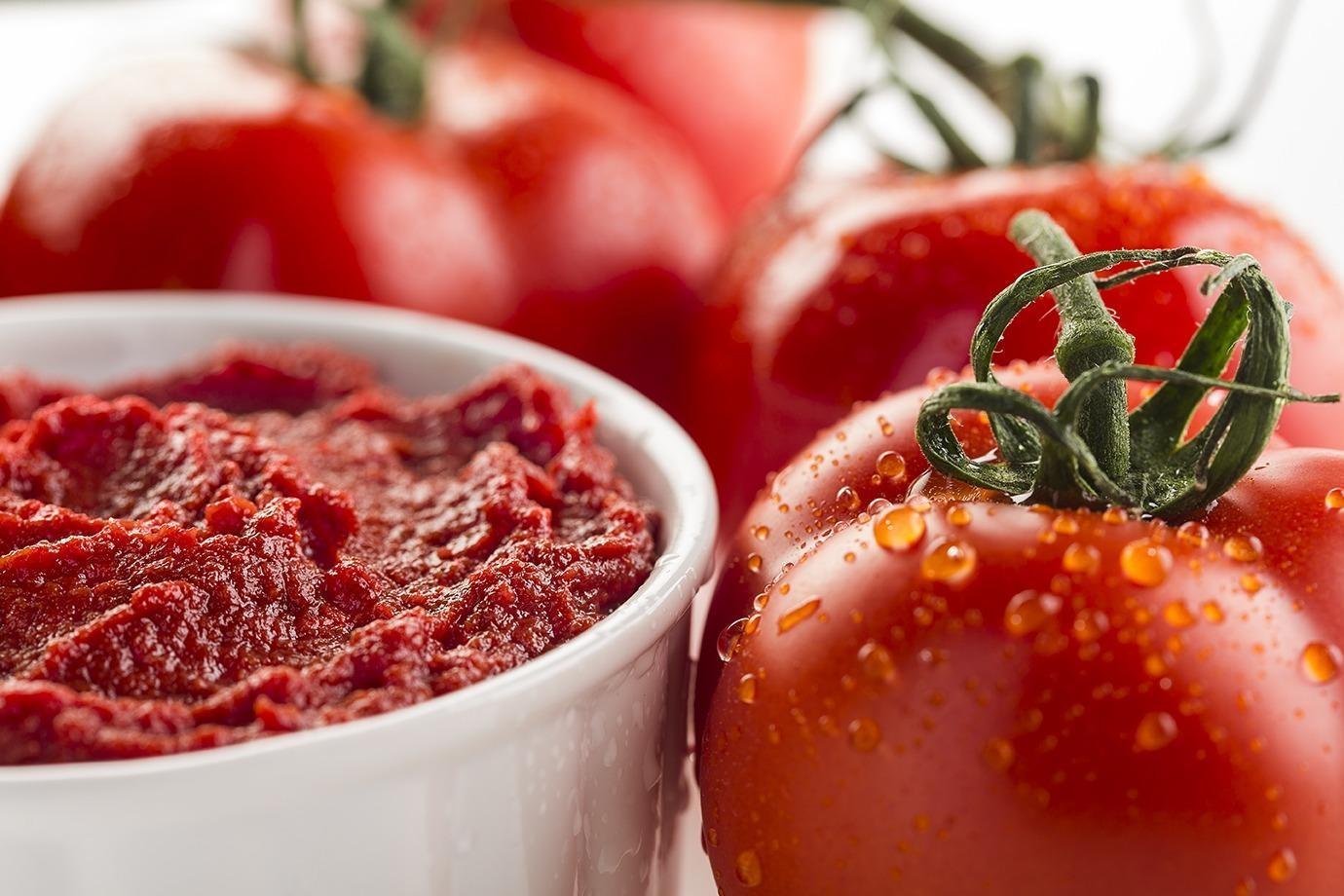Tomato Paste Production Plant Tomato paste processing machine from Turkey